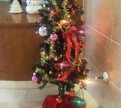 ポレスターブロードシティ大手門 クリスマスツリー飾り付け 2013年12月1日開催