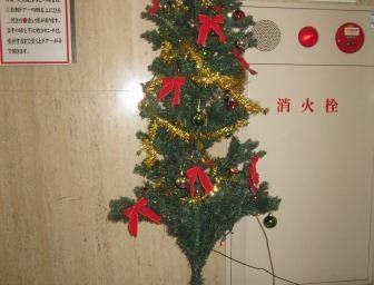 緑と赤のクリスマスカラーが際立ちますね!