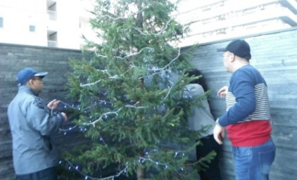 木の裏側にもイルミネーションを設置します