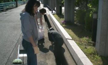 ポレスター芳泉 町内一斉清掃 2017年5月28日開催