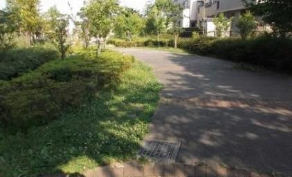 草むしり前の通路