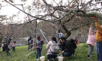 ポレスター宇品アクアテラ りんご狩り&バーベキュー 2017年11月23日開催