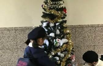 グランドール岩国アカシア通り クリスマスツリー飾り付け 2017年12月1日開催